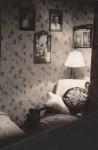 Room at Devonshire